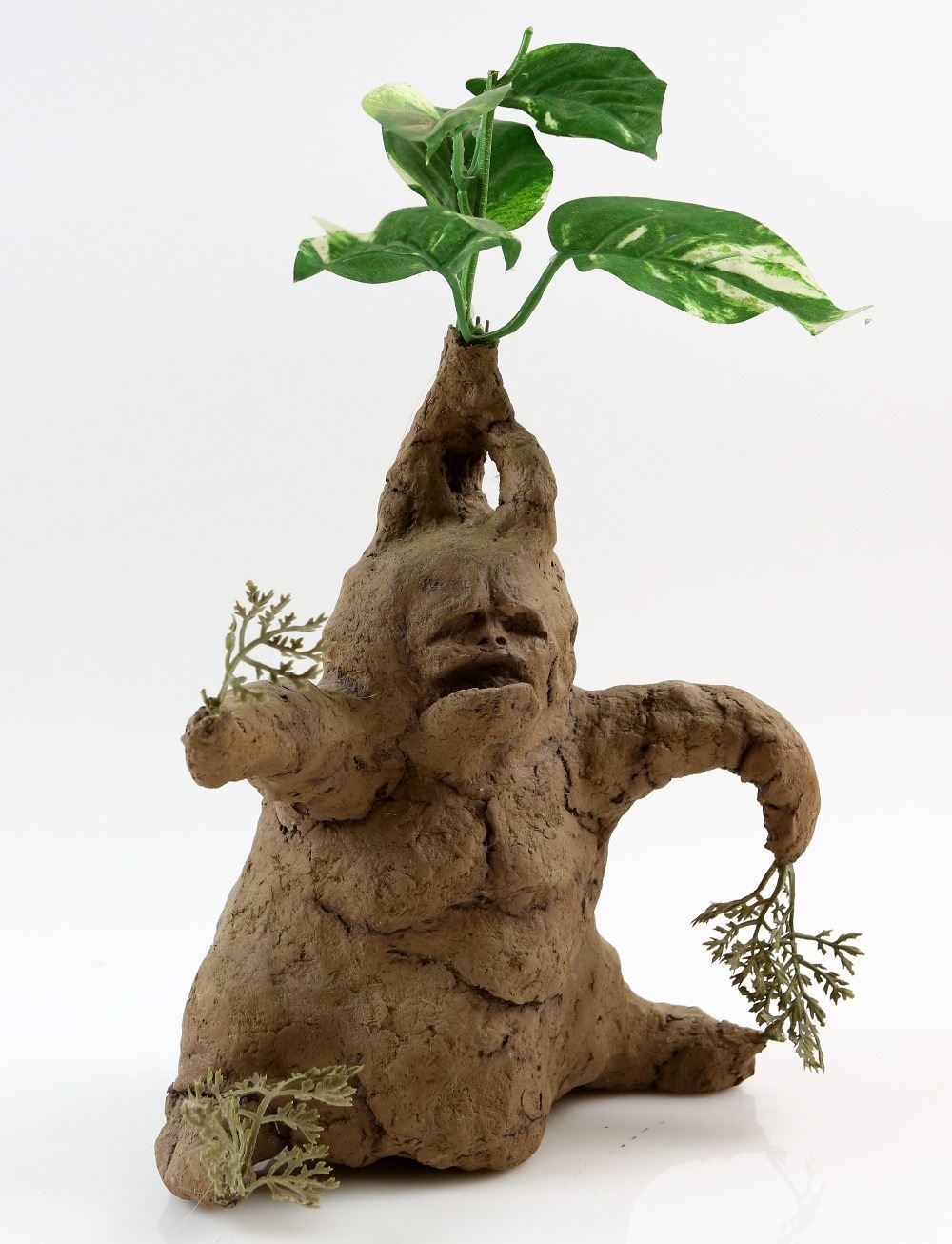 Harry Potter And The Chamber Of Secrets 2002 Mandrake Plant
