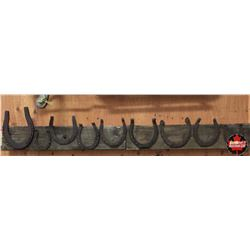 Variety Horseshoes on Barn Board