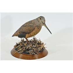 Woodcock Carving