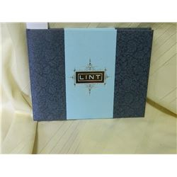THE ACME NOVELTY LIBRARY - NUMBER 20 - LINT - 2010 - REALLY GOOD CONDITION