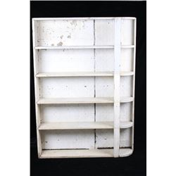 Tin Backed Painted Bookcase