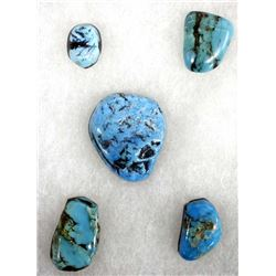 5 Turquoise Cabochons