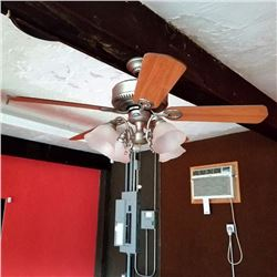 BRUSH NICKEL CEILING FAN