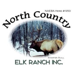 MINNESOTA BULL ELK HUNT WITH CHARTER FISHING