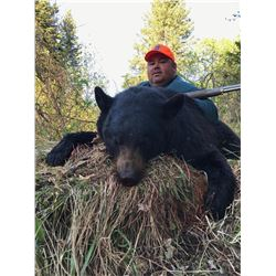 PARENT AND YOUTH OR HUSBAND AND WIFE SPRING BLACK BEAR HUNT FOR TWO