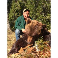 EURASIAN BROWN BEAR, CAPERCAILLIE AND BLACK GROUSE HUNT IN RUSSIA