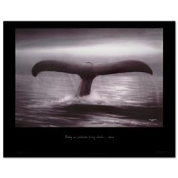 Tails of Great Whales by Wyland