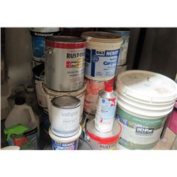 Various Paint and Cleaners