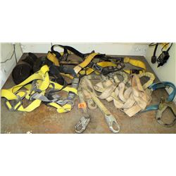 Various Straps & Harnesses