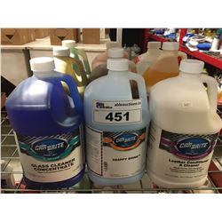 9 - 1 GAL CONTAINERS OF ASST'D PROFESSIONAL AUTO DETAILING CLEANERS (C)