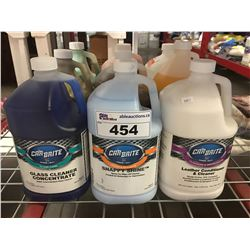 9 - 1 GAL CONTAINERS OF ASST'D PROFESSIONAL AUTO DETAILING CLEANERS (F)