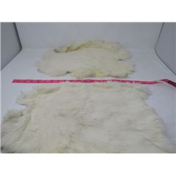 2 JUMBO RABBIT PELTS (WHITE)