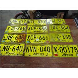 LOT OF 12 LICENCE PLATES (ALBERTA)