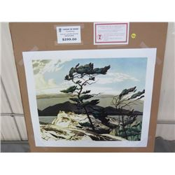 "LIMITED PRINT 'WHITE PINE' (BY AJ CASSON) *81/77* (23"" X 18.5"")"