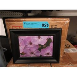 """Case of 24 New 4"""" x 6"""" Picture Frames"""