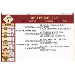 Lot - 3 - RED PRIME 820
