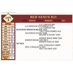 Lot - 4 - RED NEXUS 821