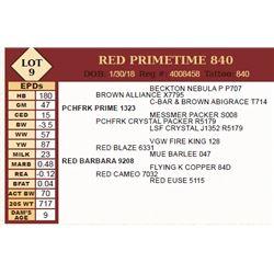 Lot - 9 - RED PRIMETIME 840