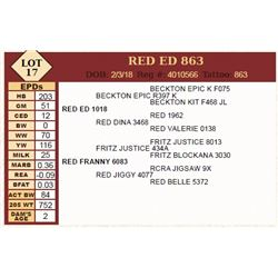 Lot - 17 - RED ED 863