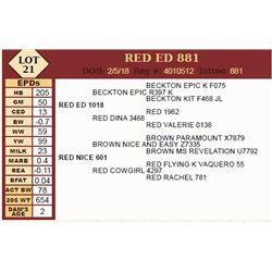 Lot - 21 - RED ED 881