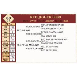 Lot - 29 - RED JIGGER 8008