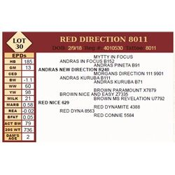 Lot - 30 - RED DIRECTION 8011