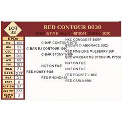 Lot - 33 - RED CONTOUR 8030