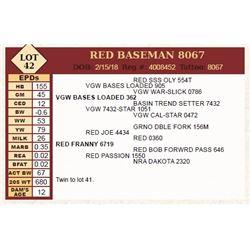 Lot - 42 - RED BASEMAN 8067