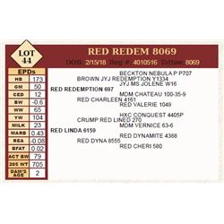 Lot - 44 - RED REDEM 8069
