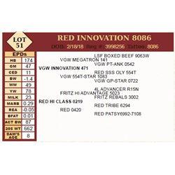 Lot - 51 - RED INNOVATION 8086