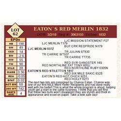 Lot - 62 - EATON`S RED MERLIN 1832