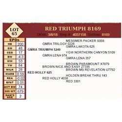 Lot - 65 - RED TRIUMPH 8169