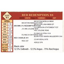 Lot - 83 - RED REDEMPTION 84