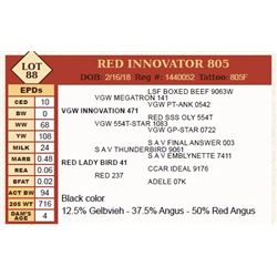 Lot - 88 - RED INNOVATOR 805