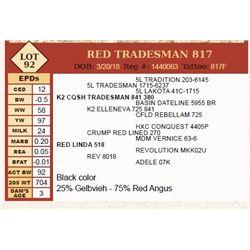 Lot - 92 - RED TRADESMAN 817