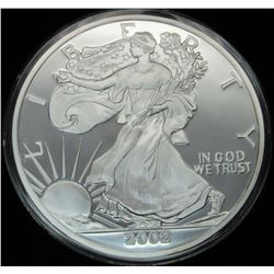 12 OZT .999 PURE SILVER ROUND IN CAPSULE