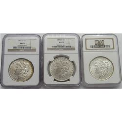 3- NGC MORGAN DOLLARS- 1883-O MS63, 1884-O MS63,