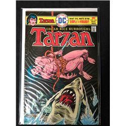 TARZAN #243 (MARVEL COMICS)