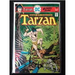 TARZAN #244 (MARVEL COMICS)