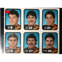 1985-86 Vancouver Canucks Team Issue Card Lot