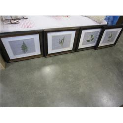 "4 MATCHING FERN PRINTS IN FRAMES 20"" X 25"""