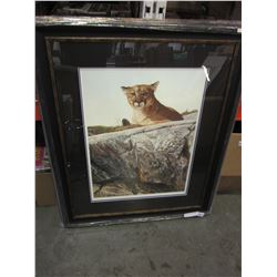SKYLINED COUGAR BY A CASEY LIMITED EDITION PRINT 23973