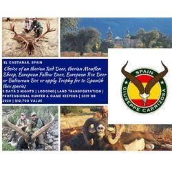 Spain-Choice of Iberian Red Deer, Iberian Mouflon, Fallow Deer, Roe Deer, Balearean Boc, or apply Tr