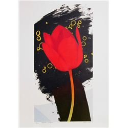 Michael Knigin, Perfect Witness, Lithograph