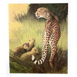 Caroline Schultz, Cheetah Family Masai Mara, Lithograph