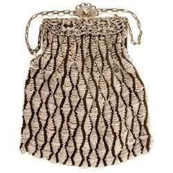 Beaded Purse with Silver Frame and Chain  (89169)
