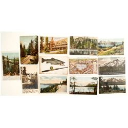Lake Tahoe Postcard Collection incl. Rare Real Photo  (78669)