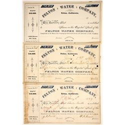 Felton Water Company Stocks  (89671)