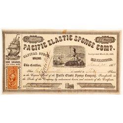 Pacific Elastic Sponge Company Stock - Number 2  (90457)