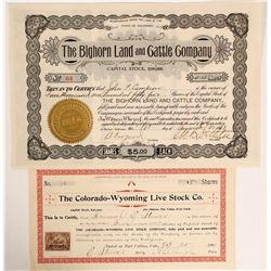 Colorado Cattle Stocks (2)  (89118)